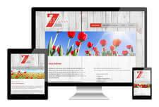 Responsive website Zeus advies